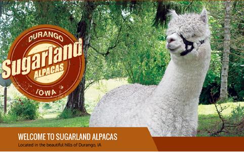 sugarland_web_1